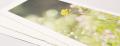 Awagami Inkjet Paper BIZAN WHITE Medium Handmade Pano 210mm X 594mm 200gsm 5 Sheets 200gsm